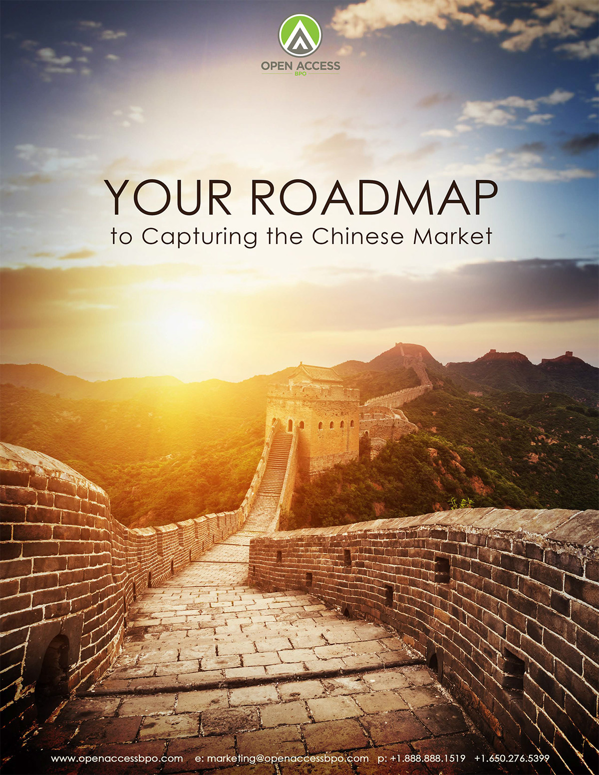 Your Roadmap to Capturing the Chinese Market