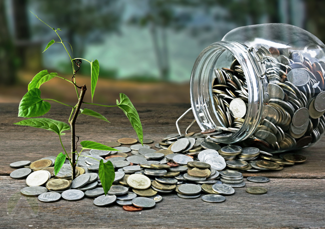 jar-overflowing-with-coins-on-growing-plant