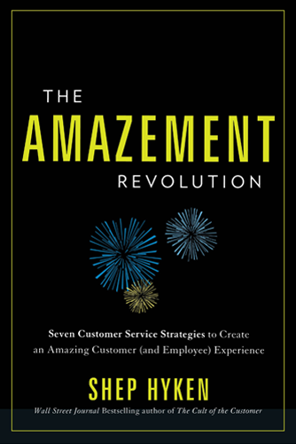 the Amazement Revolution book cover
