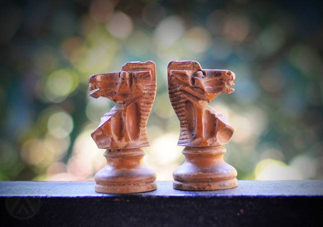 wooden knight chess pieces about faced